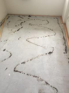 洋室 床張替え工程