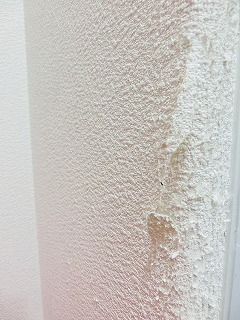 爪とぎ跡 壁