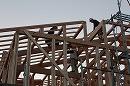 注文住宅/木の家 遊 建築工房のブログ  大府市・豊明市・東海市・名古屋市緑区